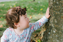 Baby Looking At Tree Outside