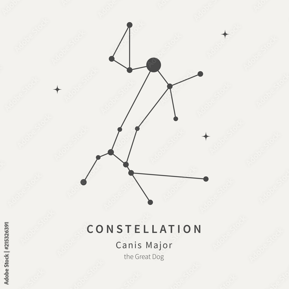 Fototapety, obrazy: The Constellation Of Canis Major. The Great Dog - linear icon. Vector illustration of the concept of astronomy.