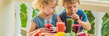 Children Drink Colorful Healthy Smoothies.. Watermelon, Papaya, Mango, Spinach And Dragon Fruit. Smoothies, Juices, Beverages, Drinks Variety With Fresh Fruits On A Wooden Table BANNER, Long Format