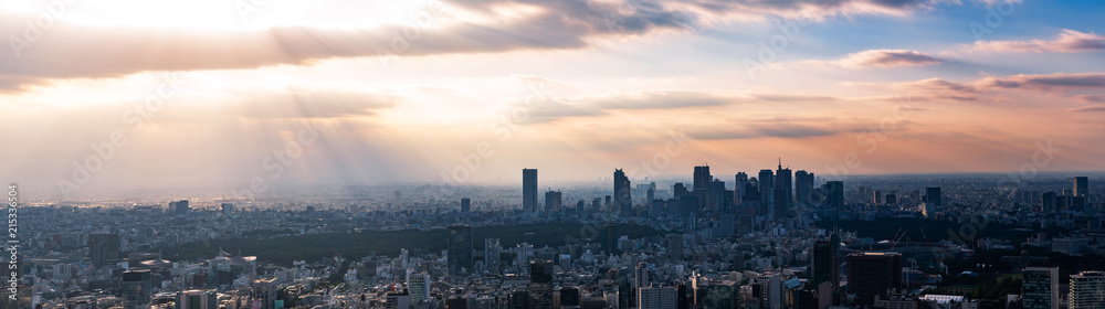 Fototapety, obrazy: 東京の景観