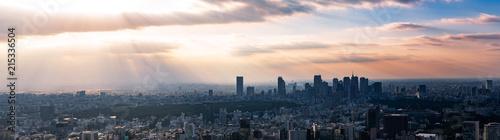 Ingelijste posters Stad gebouw 東京の景観