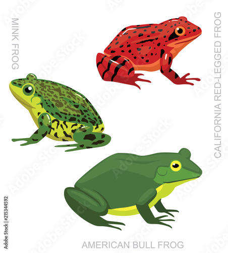 Naklejka premium Frog American Frog Set Cartoon Vector Illustration