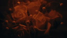 A Still Of A Small Bouquet Of Decorative White Roses Cast Under A Dim Orange Light.