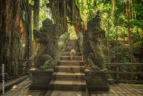 Sacred Monkey Forest Sanctuary in Ubud. Bali Island Indonesia Canvas Print