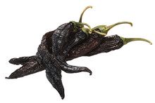 Pasilla Chilaca Dried Peppers, Paths