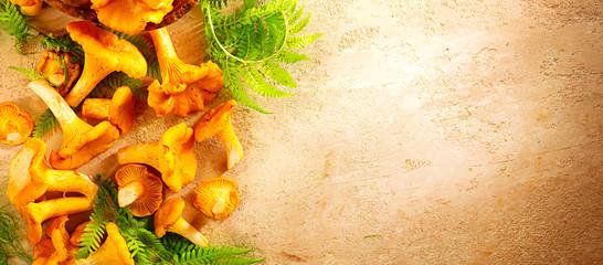 Raw wild chanterelle mushrooms on old rustic table background. Organic fresh chanterelles background. Label border design