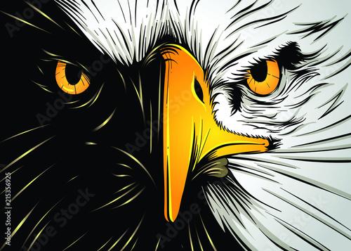 Foto Powerful Eagle Face