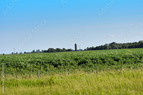 Poster Blauw Farm Silo Off in the Distance