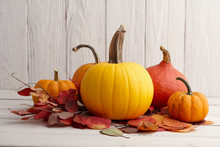Colorful Pumpkins And Gourds For Halloween And Thanksgiving, Holiday Decoration