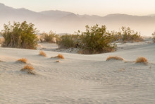 Death Valley Sand Dunes During A Sand Storm