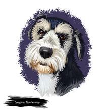 Griffon Nivernais Dog Digital ...