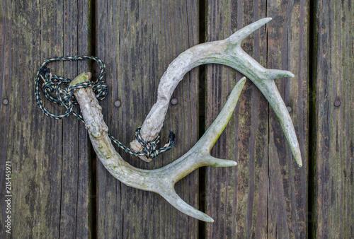 Staande foto Jacht Rattling horns for deer hunting season. Fun, recreational outdoor sport activity of hunting for whitetail deer. Deer antlers used as deer call.