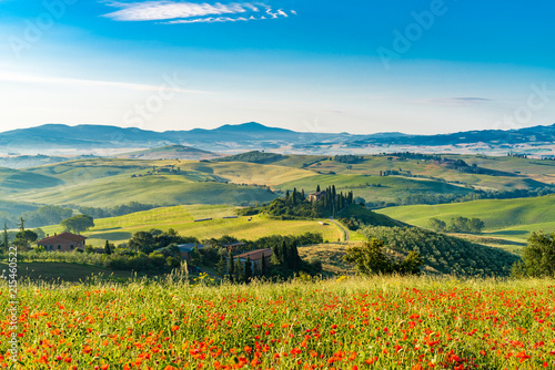 Beautiful landscape of hilly Tuscany in summer sunny morning