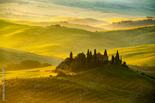 Spoed Foto op Canvas Wijngaard View of beautiful hilly Tuscan field in the golden morning light