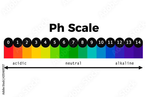 ph scale vector chart Wallpaper Mural