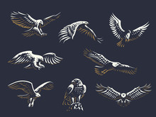 Set Of Vector Eagles.