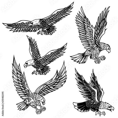 Set of eagles illustrations. Design element for logo, label, emblem, sign, poster, t shirt. Fototapete