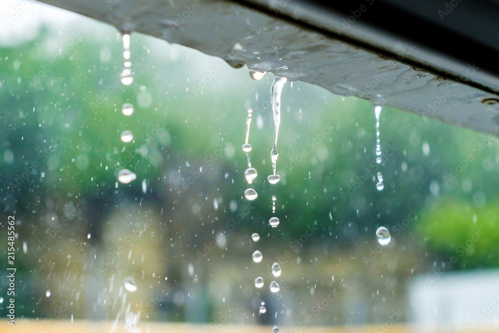 Fototapeta Rainwater drains off the roof.