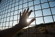 Human Hand Touching Fence Cage...