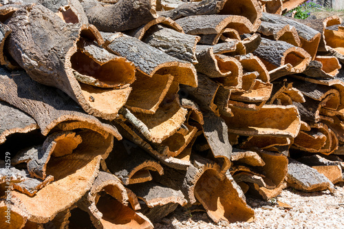 cork oak bark ready for processing in Portugal