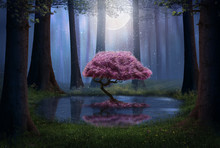 Fantasy Pink Tree In The Forest