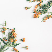 Autumn Floral Composition. Pattern Made Of Fresh Orange Flowers On White Background. Autumn, Fall Concept. Flat Lay, Top View, Square, Copy Space