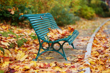 Many Autumn Fallen Leaves On Bench In Montsouris Park