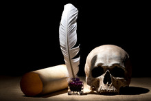 Drama Or Theater Concept. Old Inkstand With Feather Near Scroll With Skull Against Black Background. Dramatic Light