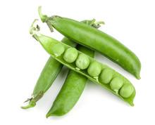 Fresh Green Pea Pod Isolated On White Background
