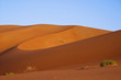 Landscape of sand dunes in the desert of Rub' Al Khali