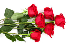 Beautiful Red Rose Isolated On White Background. Top View. Flat Lay Pattern
