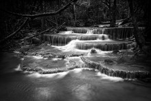 Black And White Waterfall Nature Season Spring In Forest