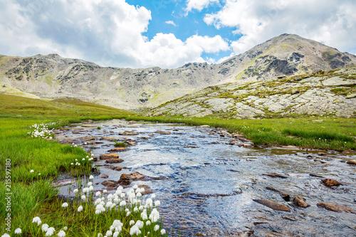 Photo ruscello in alta montagna