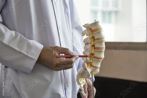Fotografía A neurosurgeon  pointing at lumbar vertebra model in medical office