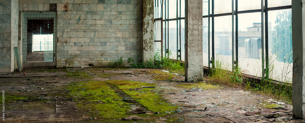 Fototapeta Industrial interior at the old electronic devices factory with big windows and empty floor. Interior inside an abandoned factory, overgrown with green moss and plants.
