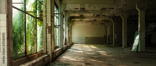 Photo sur Toile Les vieux bâtiments abandonnés Industrial interior at the old electronic devices factory with big windows and empty floor. Interior inside an abandoned factory, overgrown with green moss and plants.