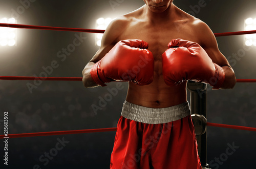 Photo  Boxer on the ring