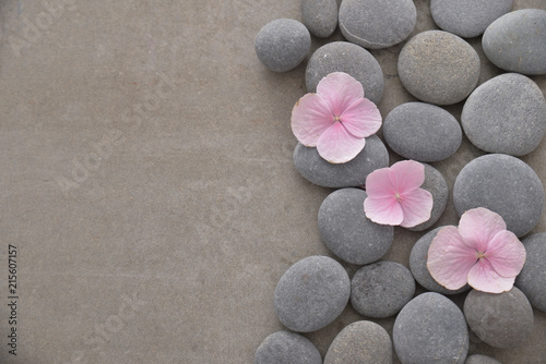 Fotografie, Obraz  Three Pink hydrangea petals with pile of gray stones on gray background