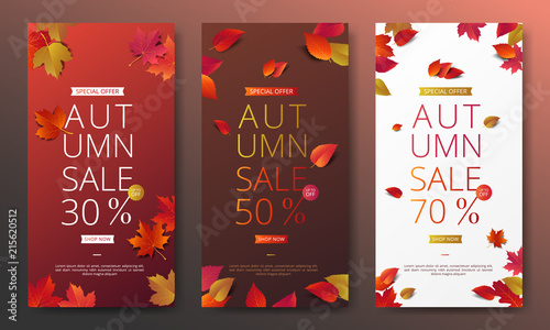 Autumn sale banner layout template decorate with maple and realistic leaves in warm color tone for shopping sale or promotion poster, leaflet and web banner Fototapeta