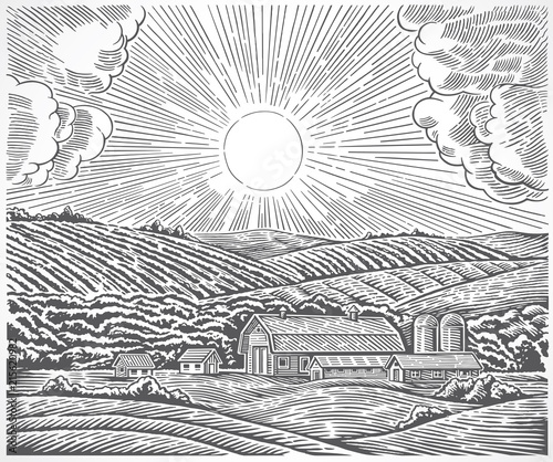 Fototapeta Rural landscape with a farm and with the sun in the sky, made in engraving style. obraz