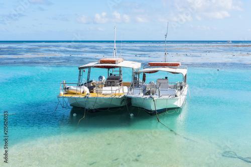 Staande foto Oceanië Exploring the Great Barrier Reef