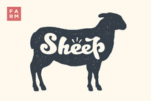 Sheep. Lettering, Typography. Animal Silhoutte Sheep Or Lamb And Lettering Sheep. Creative Graphic Design For Butcher Shop, Farmer Market. Vintage Poster For Meat Related Theme. Vector Illustration