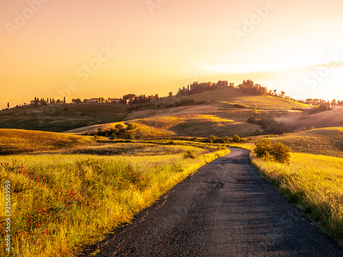 Foto op Plexiglas Honing Evening landscape of Tuscany with curvy aspalt road, Italy.