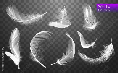 Set of isolated falling white fluffy twirled feathers on transparent background in realistic style Fototapeta