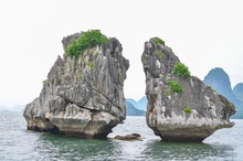 The Kissing Chickens Of Halong Bay In Northern Vietnam