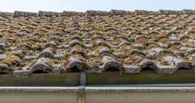 Nahaufnahme, Defektes Dach - Moos Auf Dachpfannen