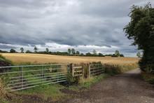 Standish Landscape (2)