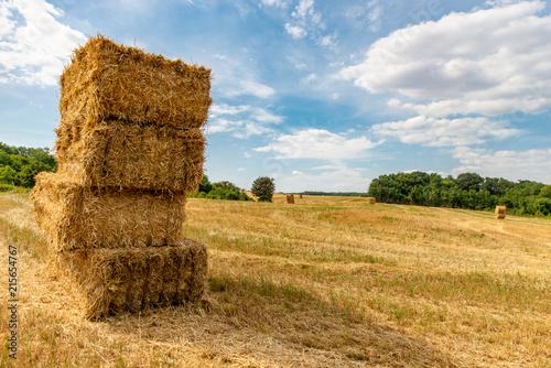 Paysage de campagne sur un champ fraichement coupé avec des ballots de paille en Fototapet
