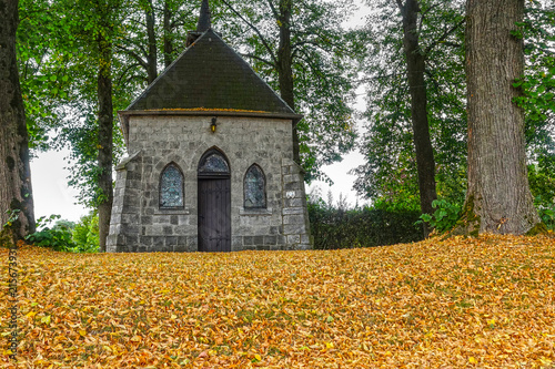 Fotografie, Obraz  Ground covered by early fall of leaves and fruits of linden trees or lime trees standing at a small chapel during a heat and drought period in western Europe in the summer