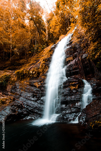 Poster Watervallen Moody Jungle Waterfall